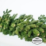 Garland - 18ft Balsam | Christmas Garland